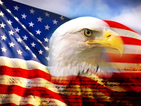 bald_eagle_head_and_american_flag1